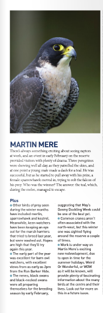 Waterlife-Issue 184- April - June 2013- martin mere