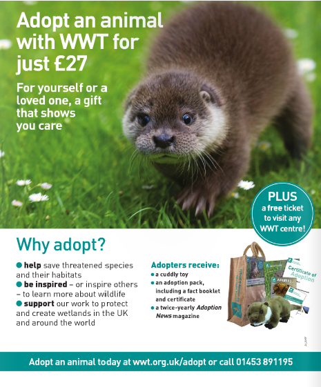 Waterlife-Issue 184- April - June 2013- promotional+advertising