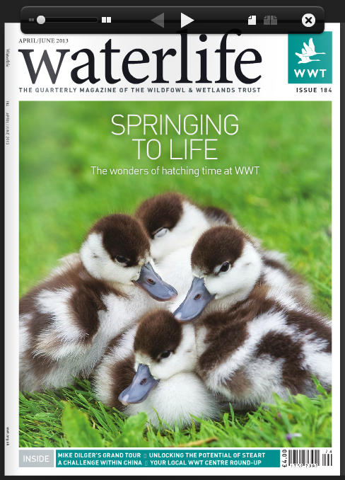 Waterlife-Issue 184- April - June 2013